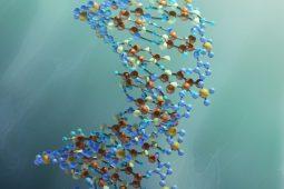 "Samenwerkende kennisinstituten: ""Biomonitoring kan sneller, betrouwbaarder en goedkoper"""
