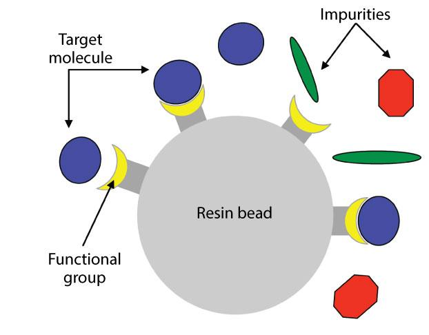 affinity chromatography.