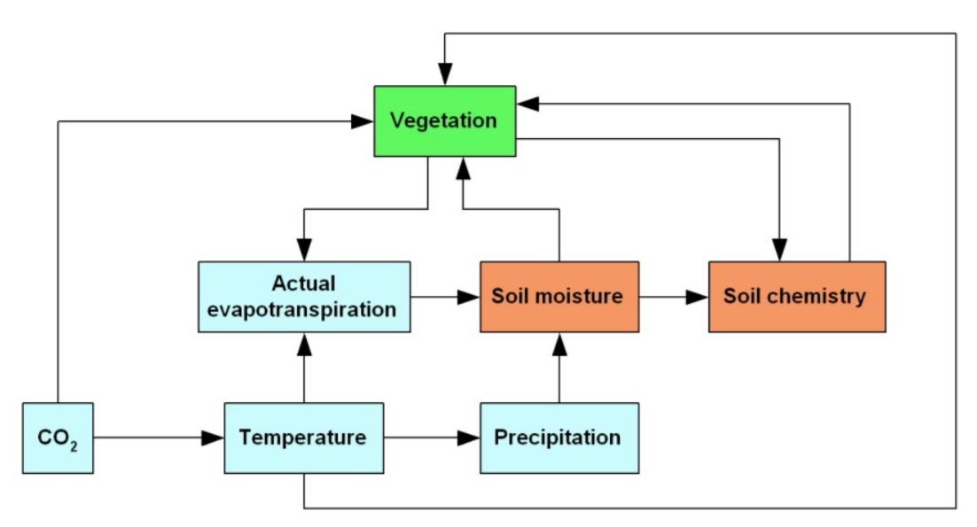 Procesdiagram van de invloed van klimaatverandering op bodem, water en vegetatie. Bron: managementsamenvatting in rapport