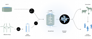 Nieuwe website Power-to-Protein alles over het maken van eiwitten uit afvalwater