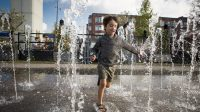 Behavioural knowledge: dealing differently with water