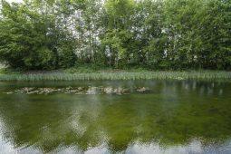 KWR gebruikt water uit eigen vijver voor TKI-onderzoek naar membraanvervuiling