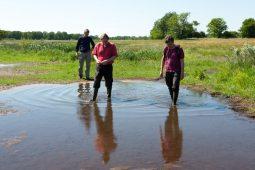 Kennisimpuls Waterkwaliteit: ruimte voor versnelling