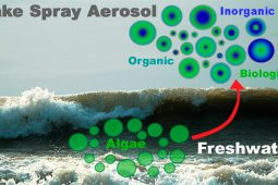 Airborne dispersal of Cyanobacteria