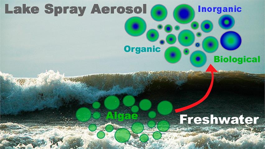 airborne dispersal of cyanobacteria kwr