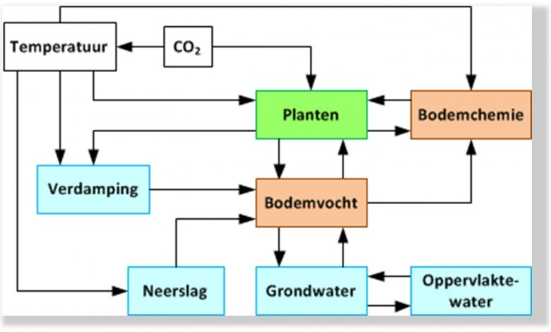 Fig. 1. Effecten van klimaatverandering op de vegetatie.