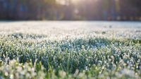 Toekenning NWO-subsidie voor opstellen proof-of-concept van bodemenergie-triplet