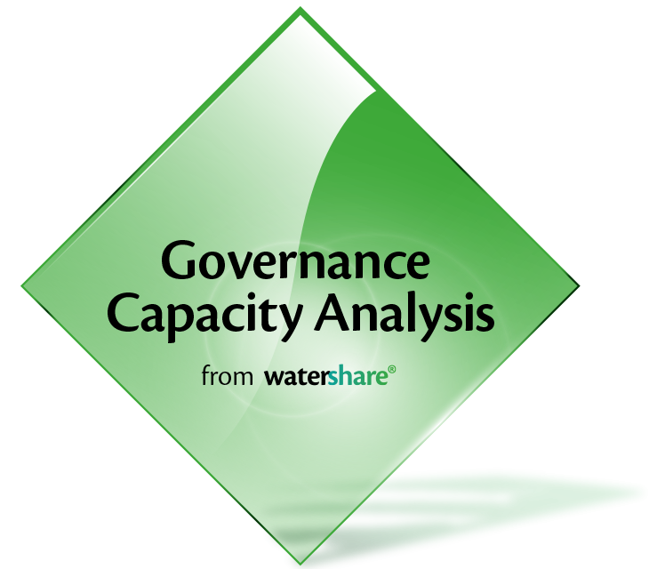 Governance Capacity Analysis