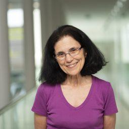 Lydia Vamvakeridou-Lyroudia PhD MEng