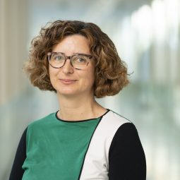 Maria Lousada Ferreira PhD