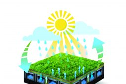 Cooling artificial grass with subsurface water storage