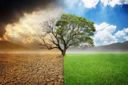 Met een gedeelde intentie klimaatverandering het hoofd bieden